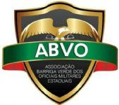 Aul�o CFO/BM - ABVO